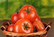 قیمت گوجه فرنگی در محله احمدی نژاد چقدر است؟
