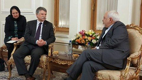 دیدار رییس مجلس مجارستان با ظریف