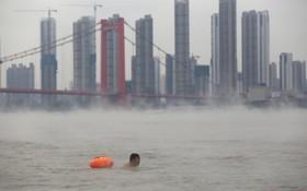 شنای یک مرد چینی در رودخانه یانگ تسه در استان هوبی