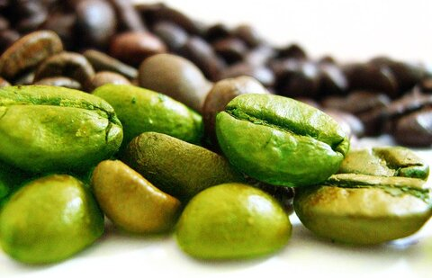 قهوه سبز چیست   آیا واقعا قهوه سبز باعث لاغری میشود
