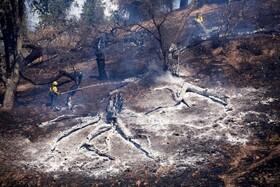 آتش سوزی در جنگل های لس آنجلس آمریکا