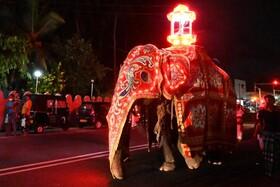 جشنواره ای در کلمبو سریلانکا