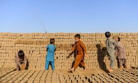 کارگران آجر  پزی در هرات افغانستان