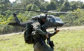 تلاش نیروهای نظامی در کلمبیا برای جلوگیری از تخریب جنگل ها