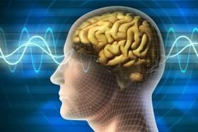 قدرت عجیب مغز انسان برای پیش بینی گفته های مخاطب!