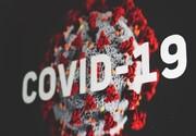 آخرین موارد ابتلا به کرونا در کشور؛ شناسایی ۸۵۲۵ فرد مبتلا به کرونا و ۸۶ فوتی طی ۲۴ ساعت اخیر/مجموع بیماران کووید۱۹ در کشور به یک میلیون و ۶۵۶ هزار و ۶۹۹ نفر رسید