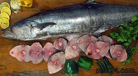 خواص  ماهی برای خون