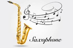 خواص موسیقی | خواص موسیقی کلاسیک | خواص سازهای موسیقی بر بدن