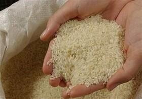 پرش بلند قیمت موادغذایی در ایران