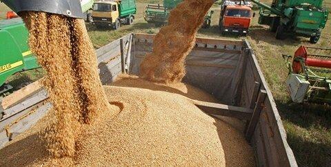 سرنوشت مبهم 15 میلیارد دلار نیاز واردات خوراک دام و طیور