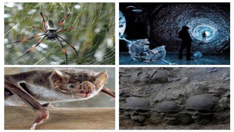 ۱۰ ناشناخته جهان؛ اکتشافات علمی ترسناک که از آن خبر ندارید!+ تصاویر